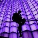 PurpleLoco
